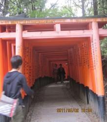 伏見神社2