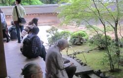 竜安寺で瞑想